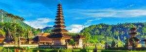 Bali SEO services